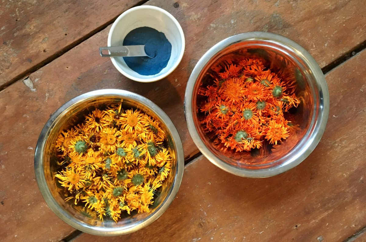 Dried calendula and indigo powder