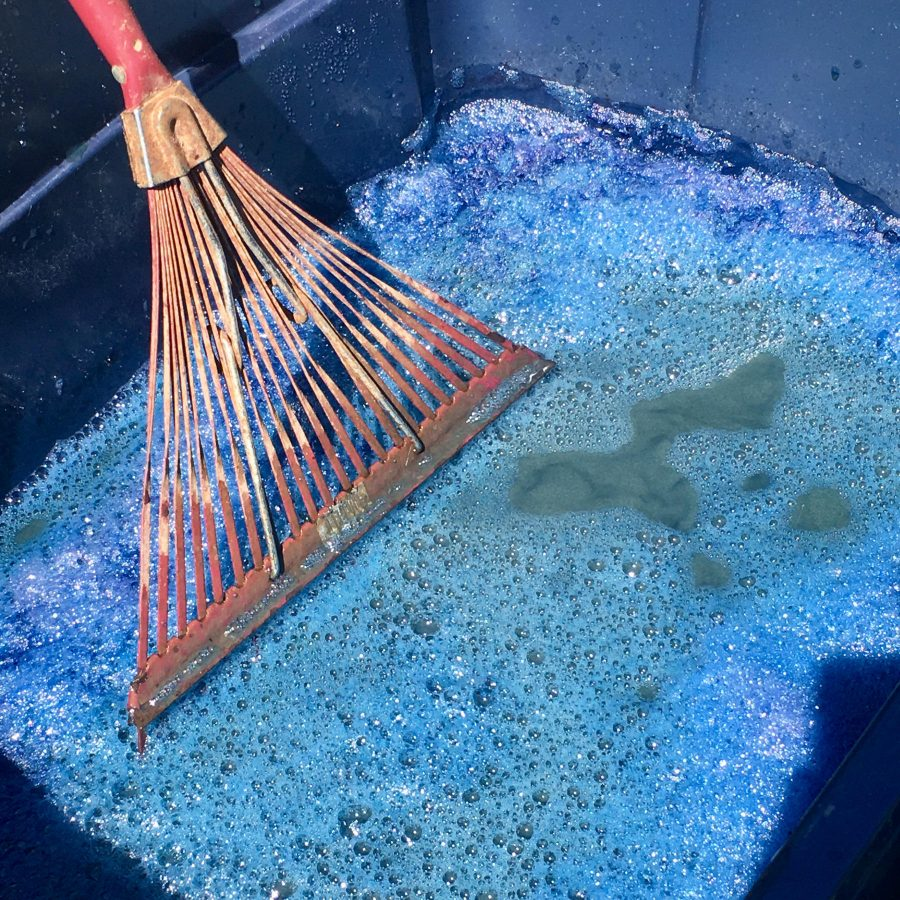 Indigo pigment during the extraction process
