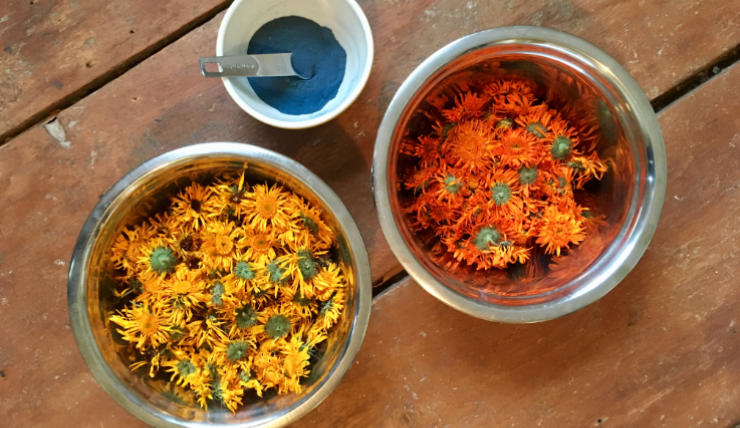 Natural dye plants and powders