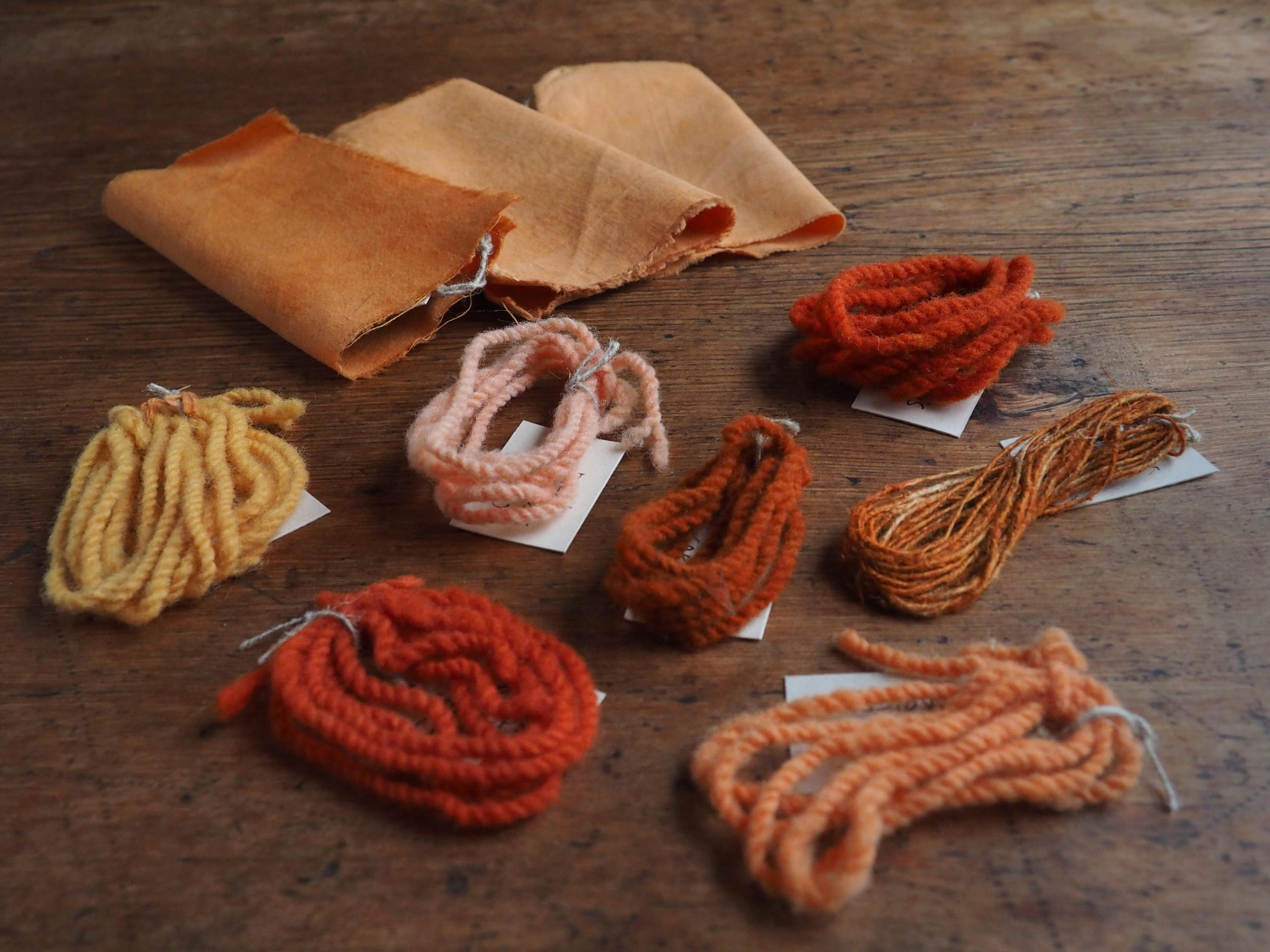 Dyer's Coreopsis natural dye colour swatches