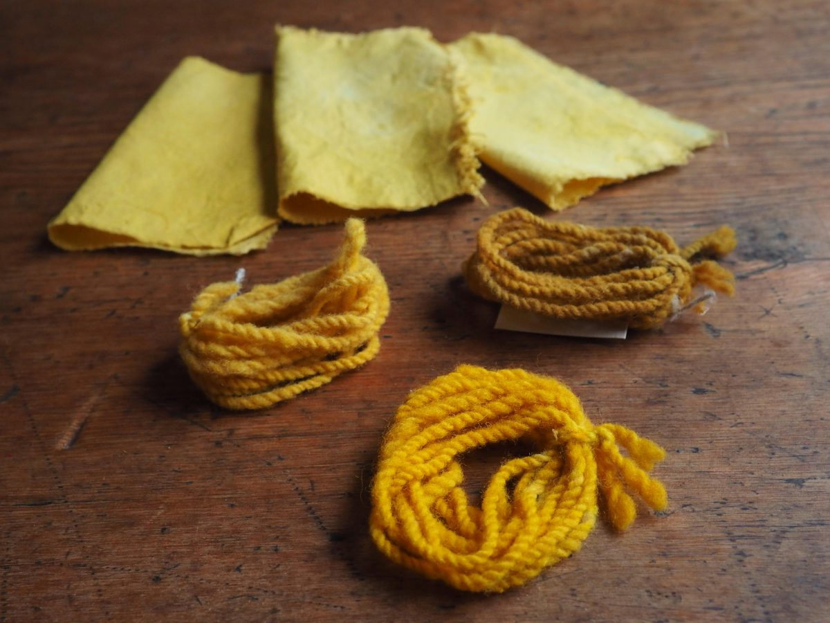 Marigold natural dye colour swatches