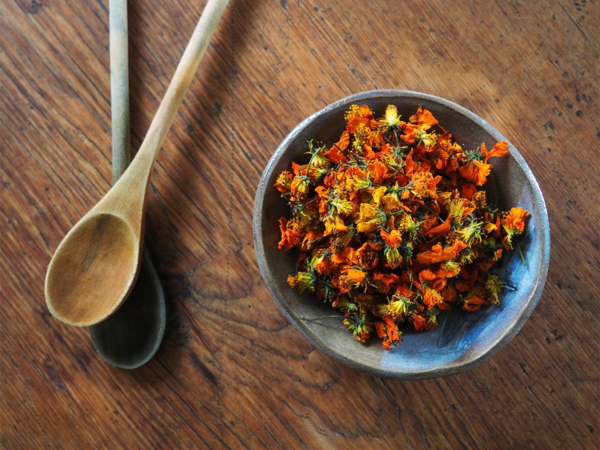Orange Cosmos natural plant dye in a bowl