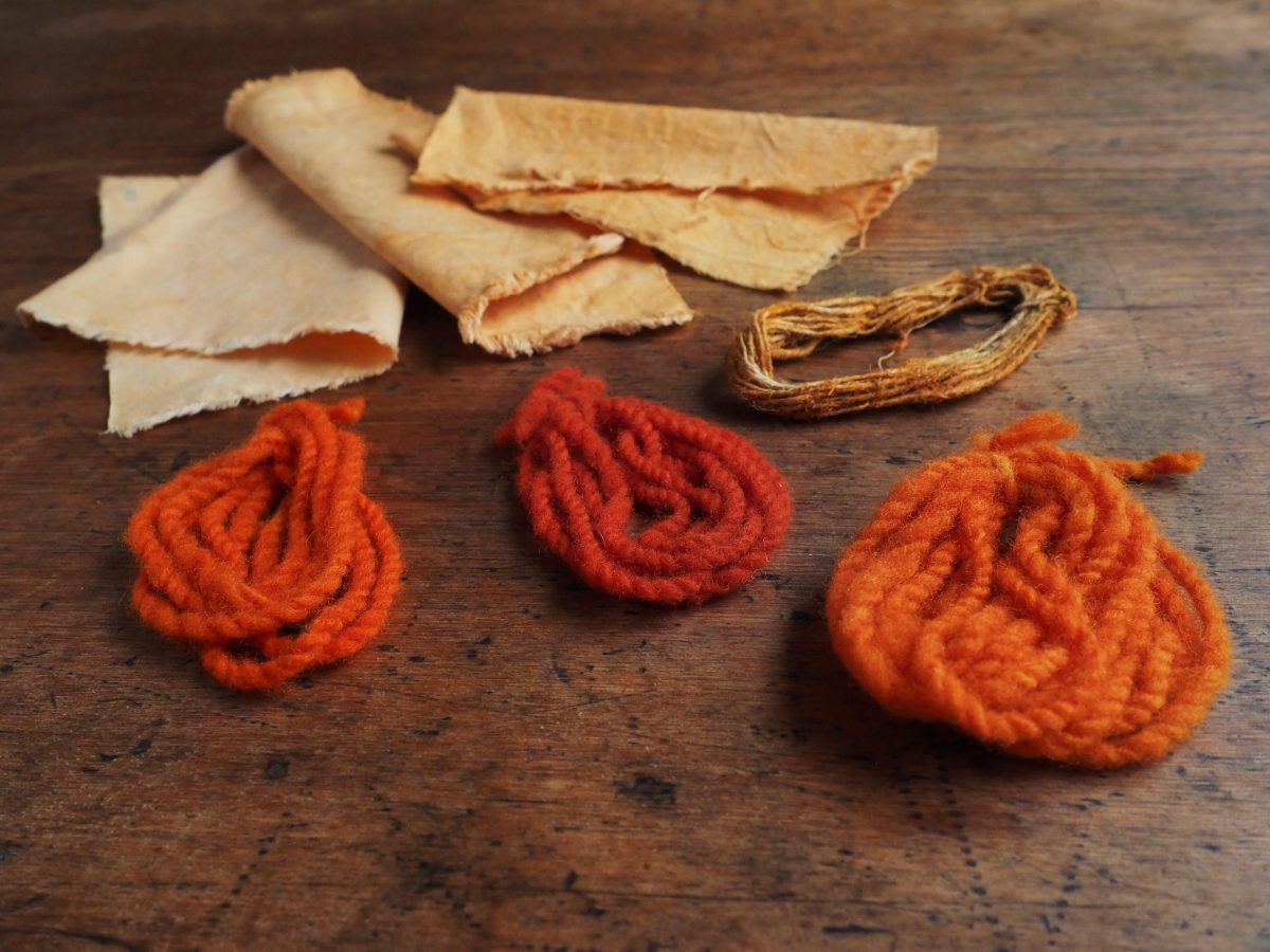 Orange Cosmos natural dye colour swatches