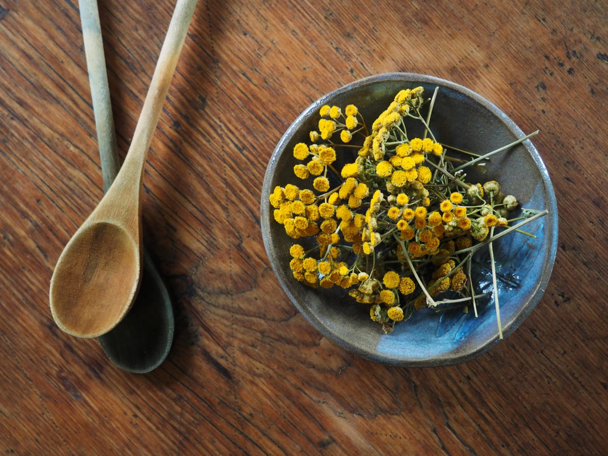 Bowl of Tansy flower tops