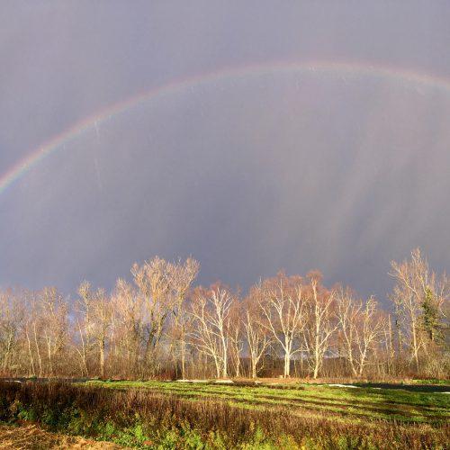 Huge rainbow over the farm field