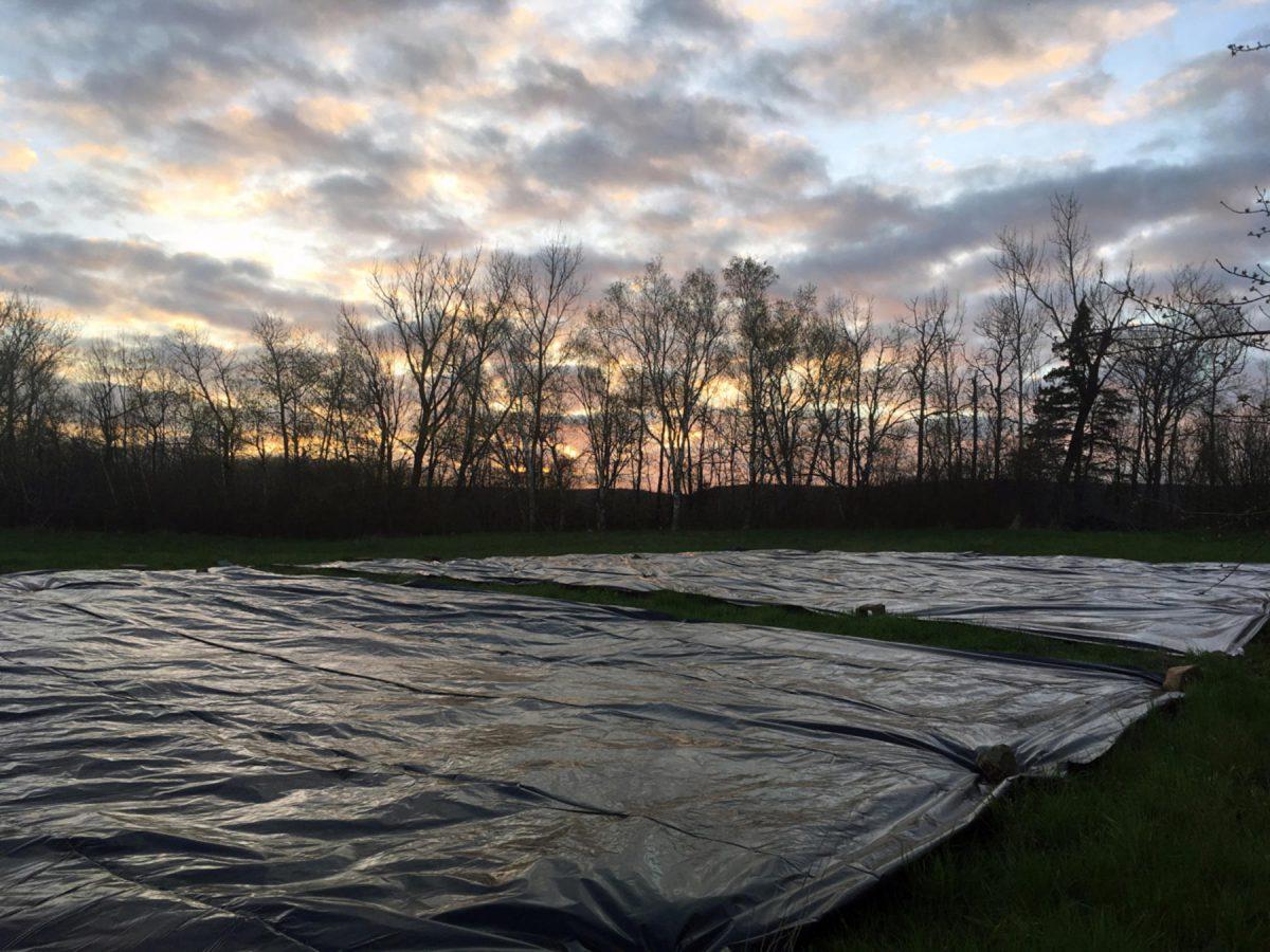 Tarps on a flat farm field at sunset