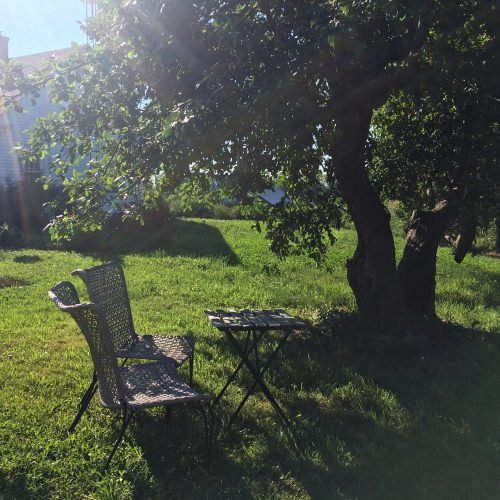 Bistro table and chairs under a tree in midday sun