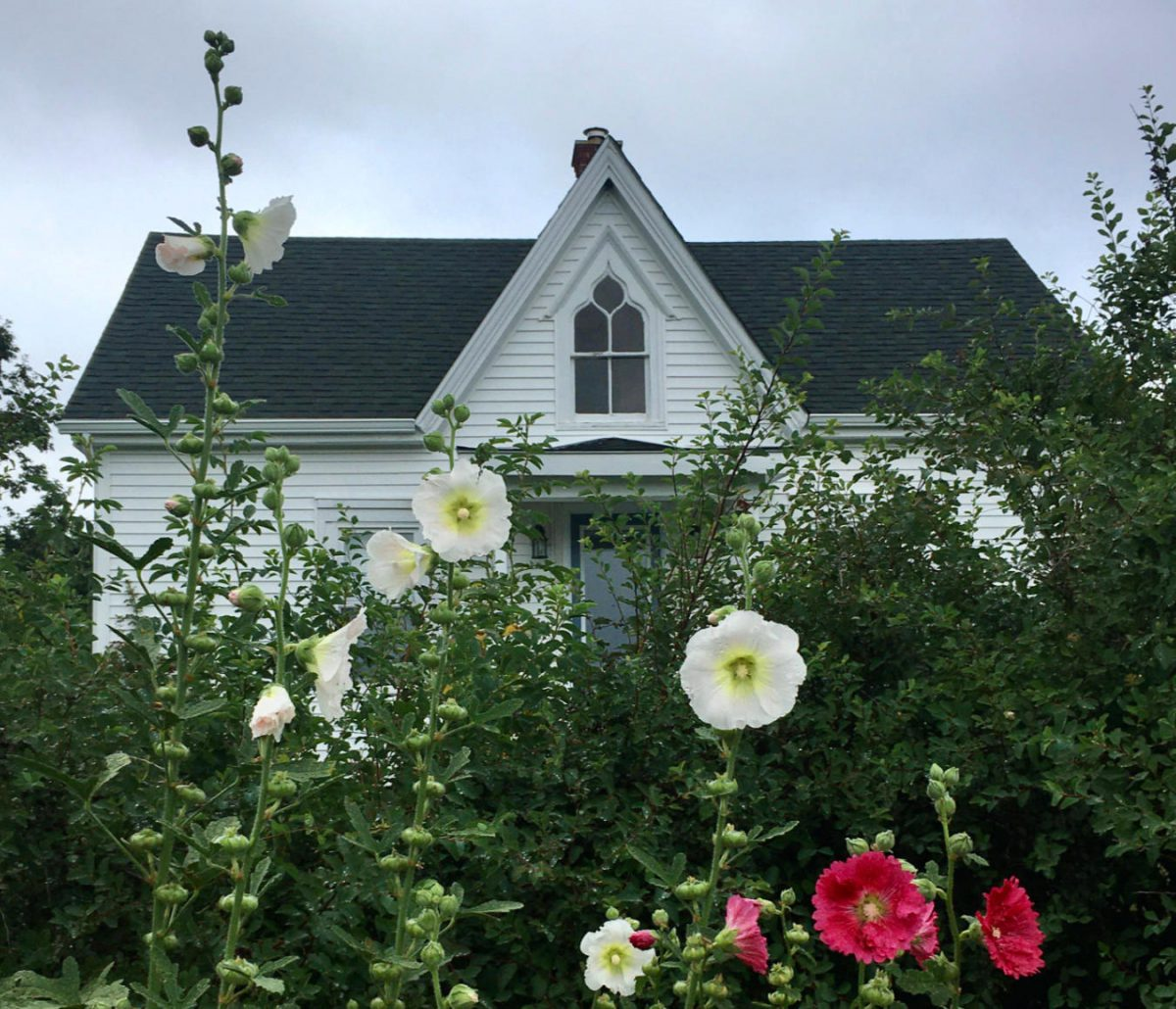 Gothic revival farmhouse with pink and white hollyhocks in the foreground