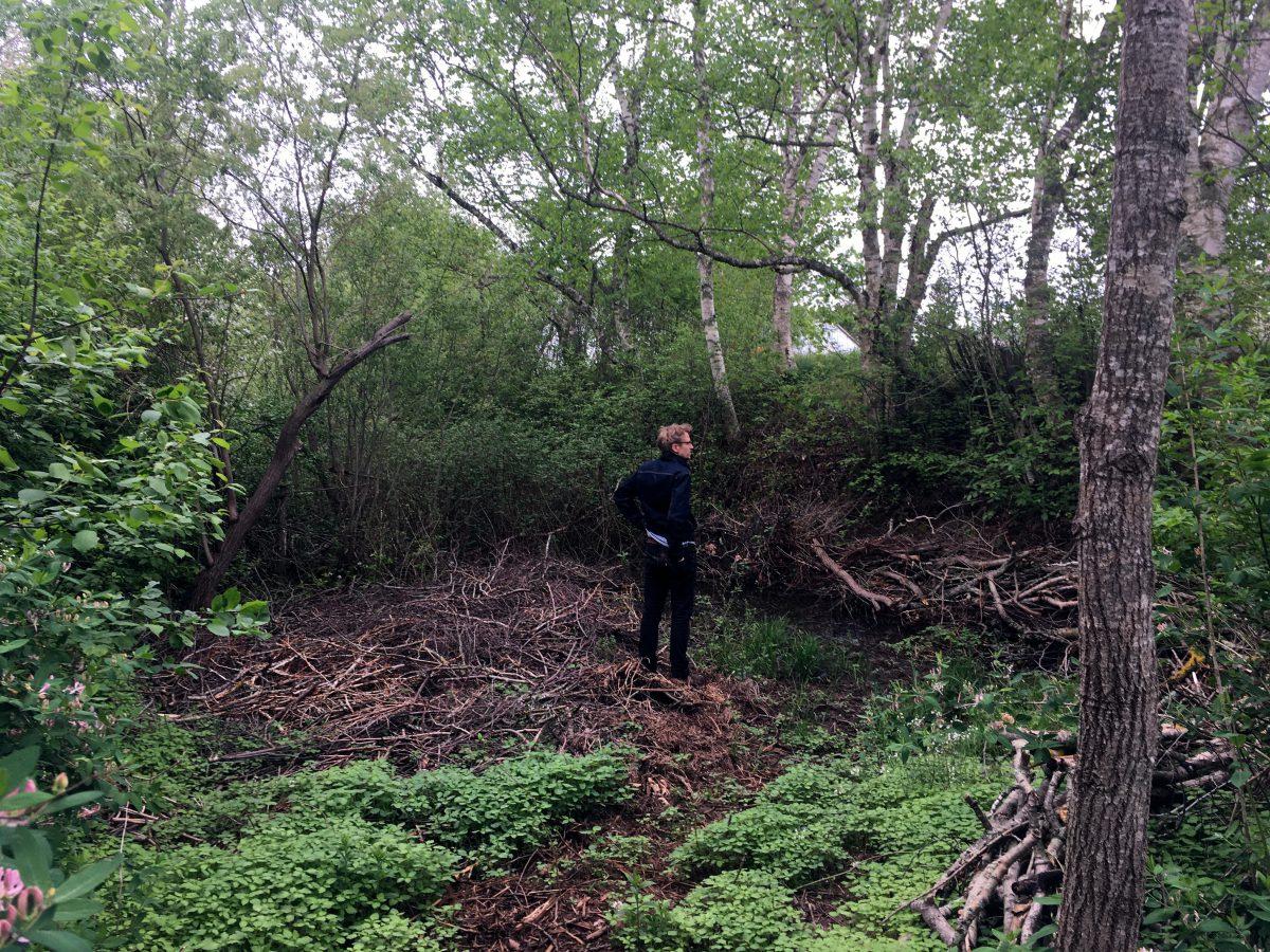 Calvin standing in an overgrown boggy woodland looking around