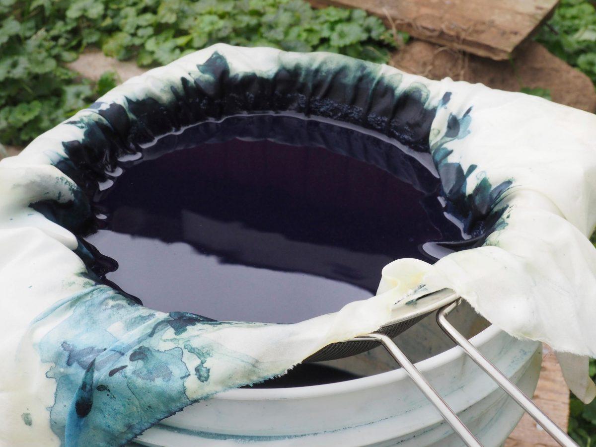 Indigo in a sieve over a bucket